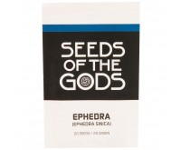 Efedra [Ephedra sinica] (Seeds of the Gods) 20 samen