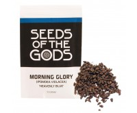 Morning Glory Samen (10 Gramm) - Heavenly Blue