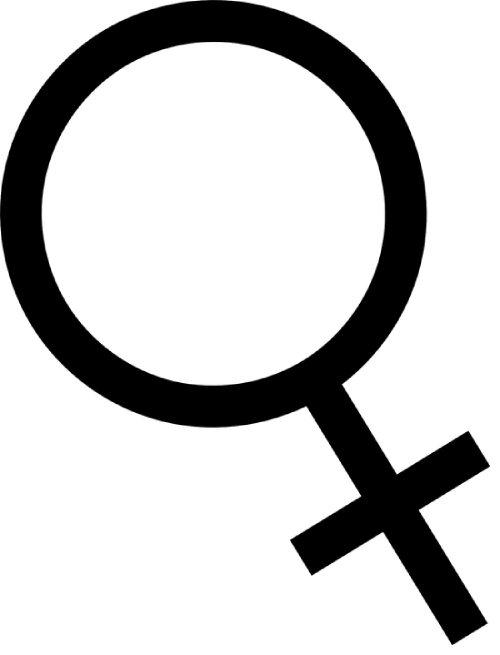 Feminisiert Logo Dutch Headshop